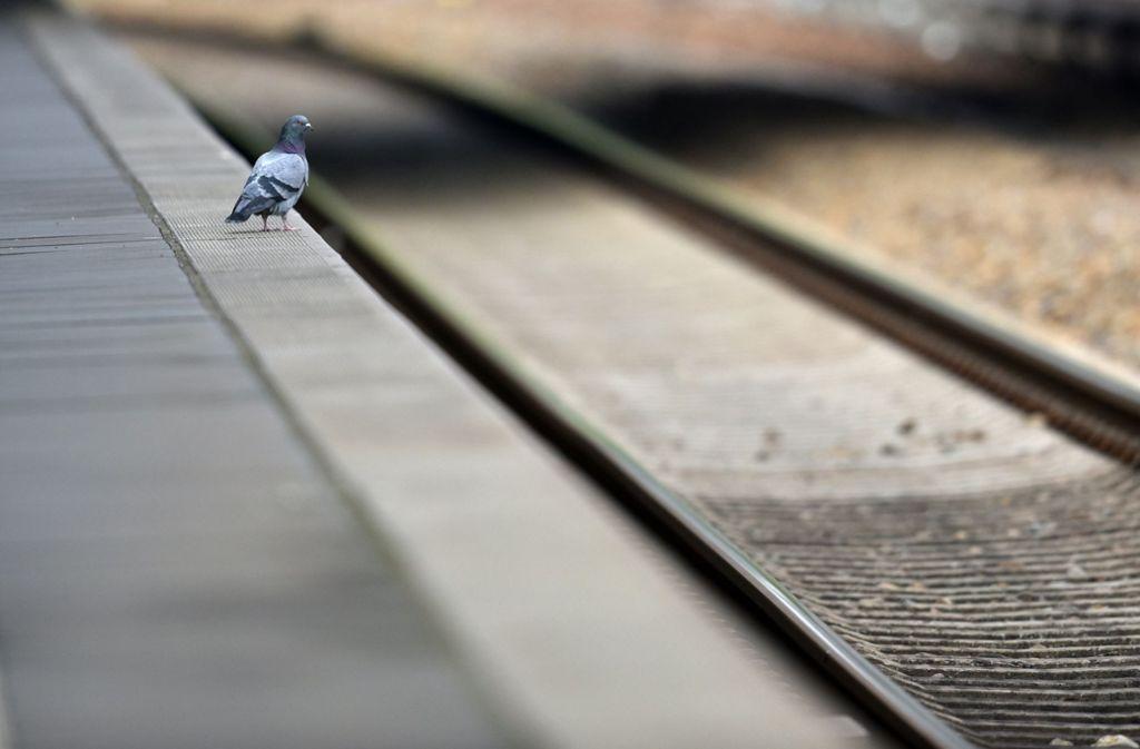 Mit einem Finanzierungspaket über 430 Millionen Euro sollen  Bahnhöfe im Südwesten in den kommenden Jahren modernisiert werden. Foto: dpa/Ralf Hirschberger