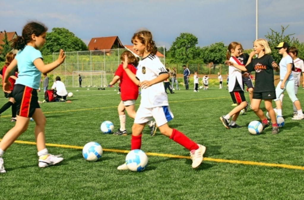 Bald existiert für den Fußball-Nachwuchs noch eine weitere Trainingsfläche auf dem gut besuchten Gelände des Sportforums Vaihingen-West. Foto: Archiv Kai Müller