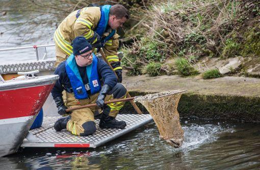 Behörden geben Gewässer wieder frei