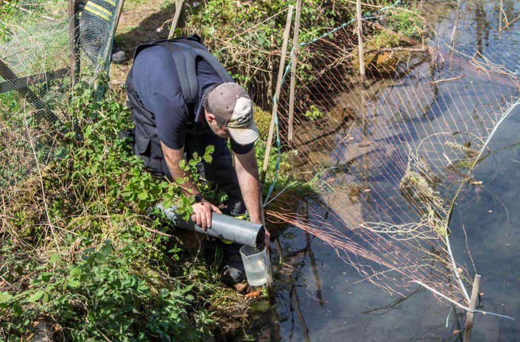 Am Montag haben Experten in dem betroffenen Teich Wasserproben genommen. Foto: SDMG