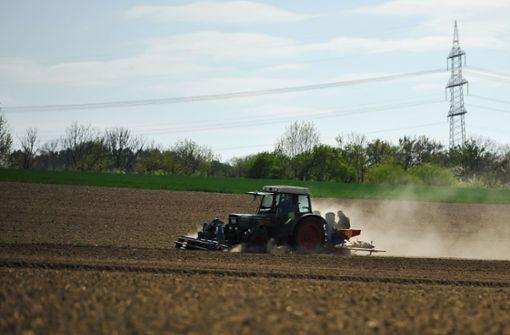Trockenes Wetter bereitet Landwirten Sorge