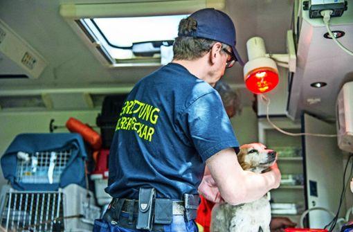 Wer bezahlt, wenn die Feuerwehr Tiere rettet?