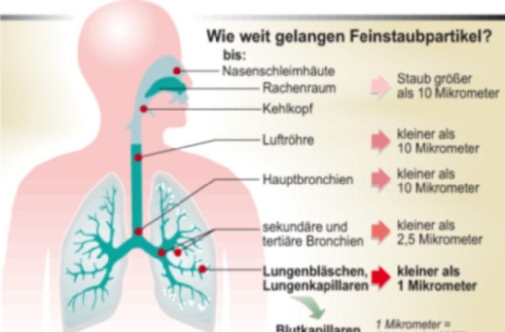 Die Gefahr ist unsichtbar: Feinstaub setzt sich in den Atemwegen fest. Foto: Reuters