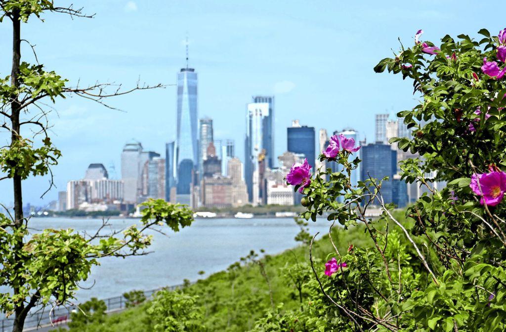 Schon allein wegen dieses Blickes auf New York lohnt sich ein Ausflug mit dem Schiff nach Governors Island. Foto: Nohrden