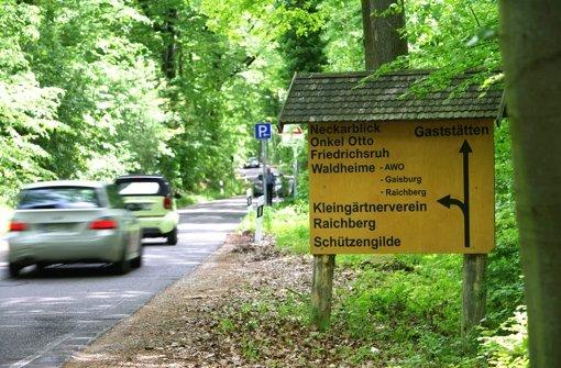 Freie Plätze im Waldheim