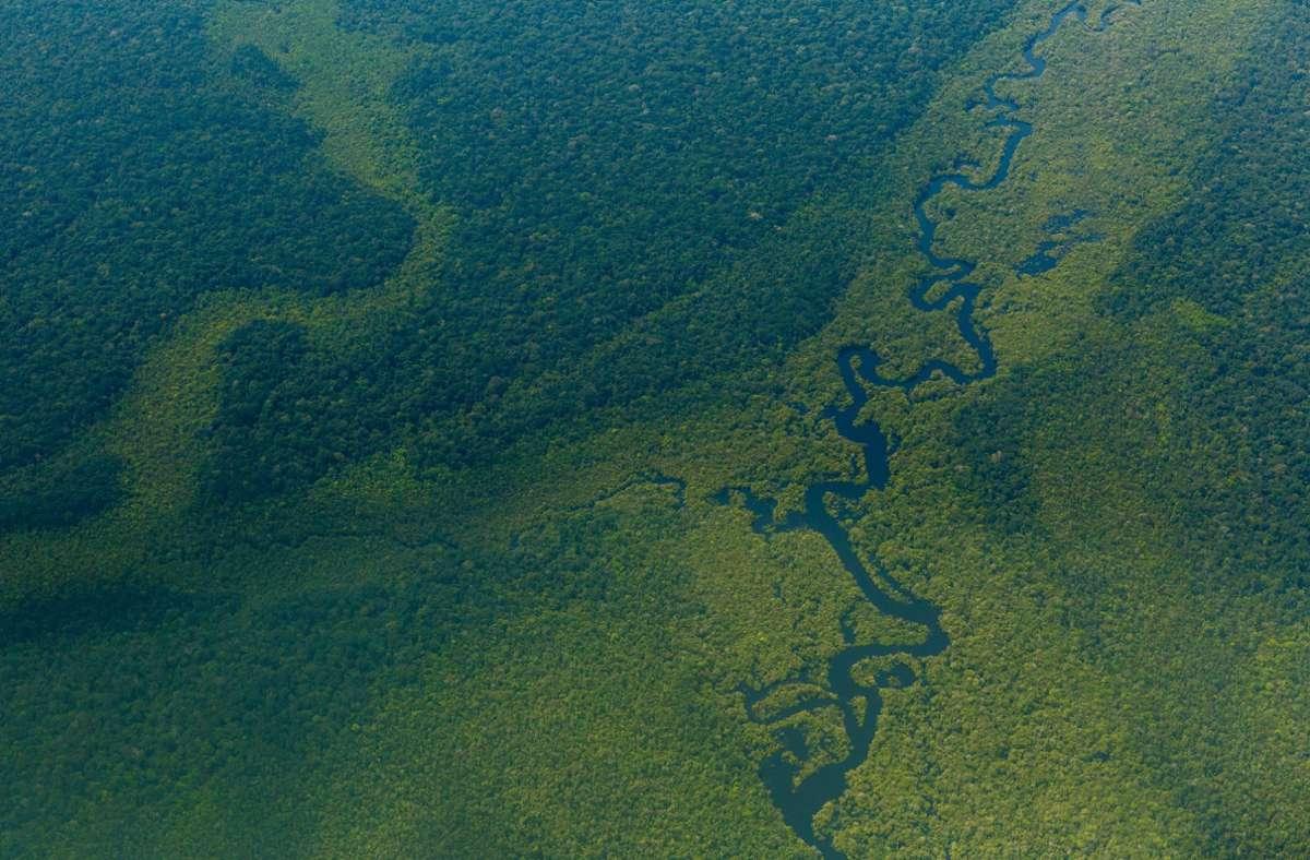 Luftblick auf den Wald im Amazonas nahe Sao Gabriel da Cachoeira in Brasilien. Nur wenige Lebensräume auf der Welt sind in ihrer Artenvielfalt noch intakt. Foto: Diego Baravelli/dpa