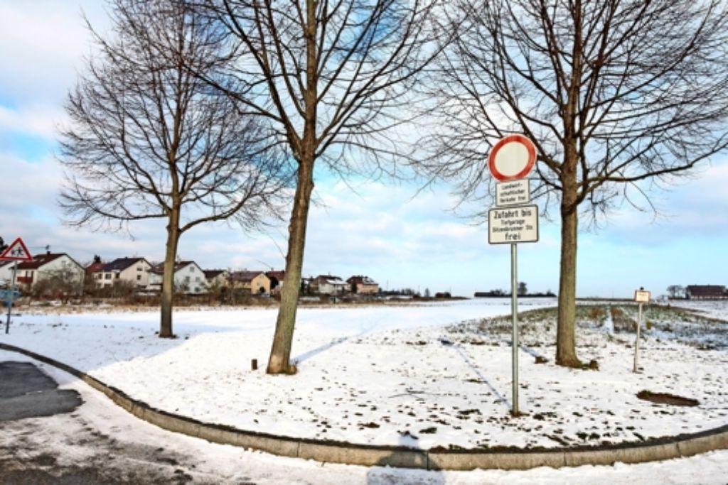 Der Gemeinderat hat beschlossen, am Ortsrand der Kernstadt in Richtung Münchingen Platz für  bis zu 750  Einwohner zu schaffen. Foto: factum/ Granville