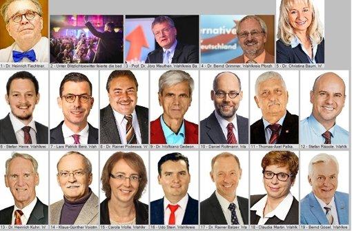 Wer sind die 23 Kandidaten (hier ein Teil von ihnen), die am Wahlsonntag für die Alternative für Deutschland (AfD) in den baden-württembergischen Landtag eingezogen sind? In der Bilderstrecke stellen wir sie je einzeln vor. Foto: dpa