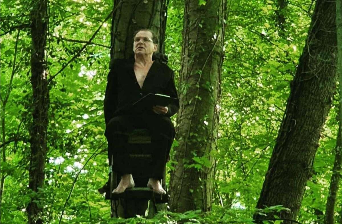 """Der Dichter im Baum:   Bernhard Hurm vom Lindenhof-Theater liest Hölderlins """"Hyperion"""". Foto: Theater Lindenhof"""