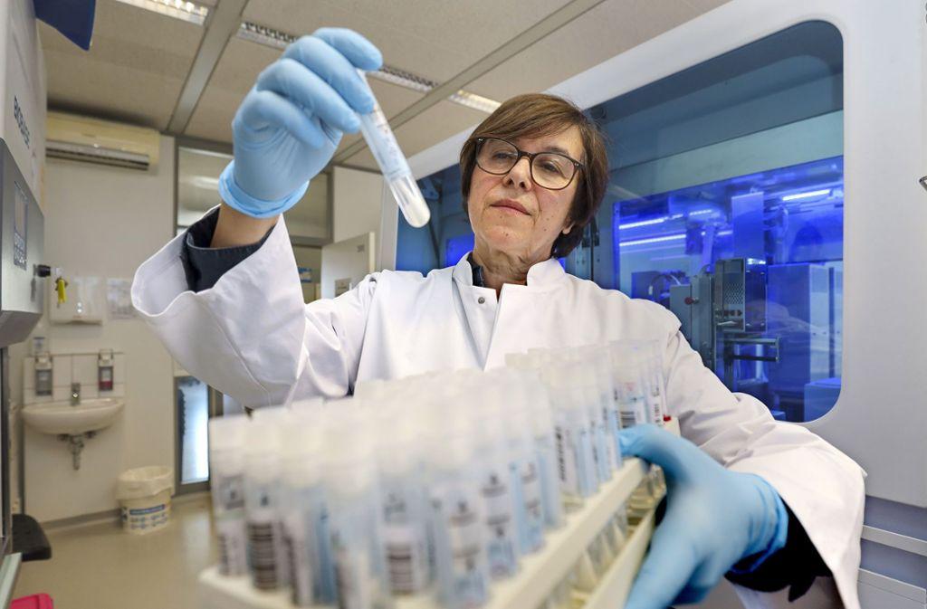 Ausnahmezustand im Sindelfinger Labor: Martina Buchert-Graeve und ihre Kollegen arbeiten  sieben Tage die Woche zehn bis zwölf Stunden. Foto: factum/Simon Granville