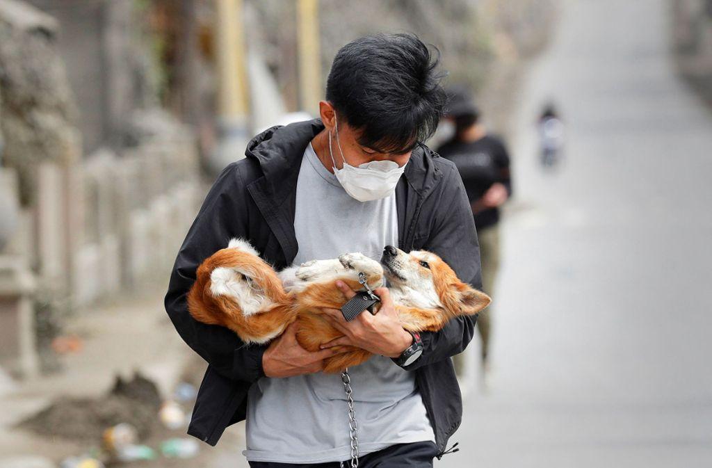 Philippinen, Provinz Batangas: Ein Freiwilliger bringt in einem verlassenen Dorf einen Hund in Sicherheit, den Dorfbewohner auf der Flucht vor dem Vulkan zurückgelassen haben. Foto: dpa/Aaron Favila