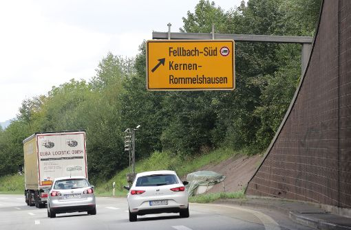 Verkehrsrowdy verletzt 100000-Euro-Pferd