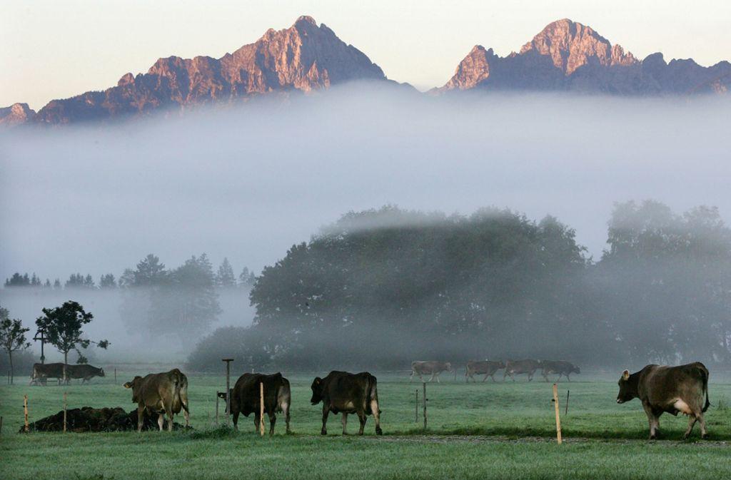 Die Tannheimer Berge sind bei Touristen ein beliebtes Urlaubsziel (Archiv). Foto: AP