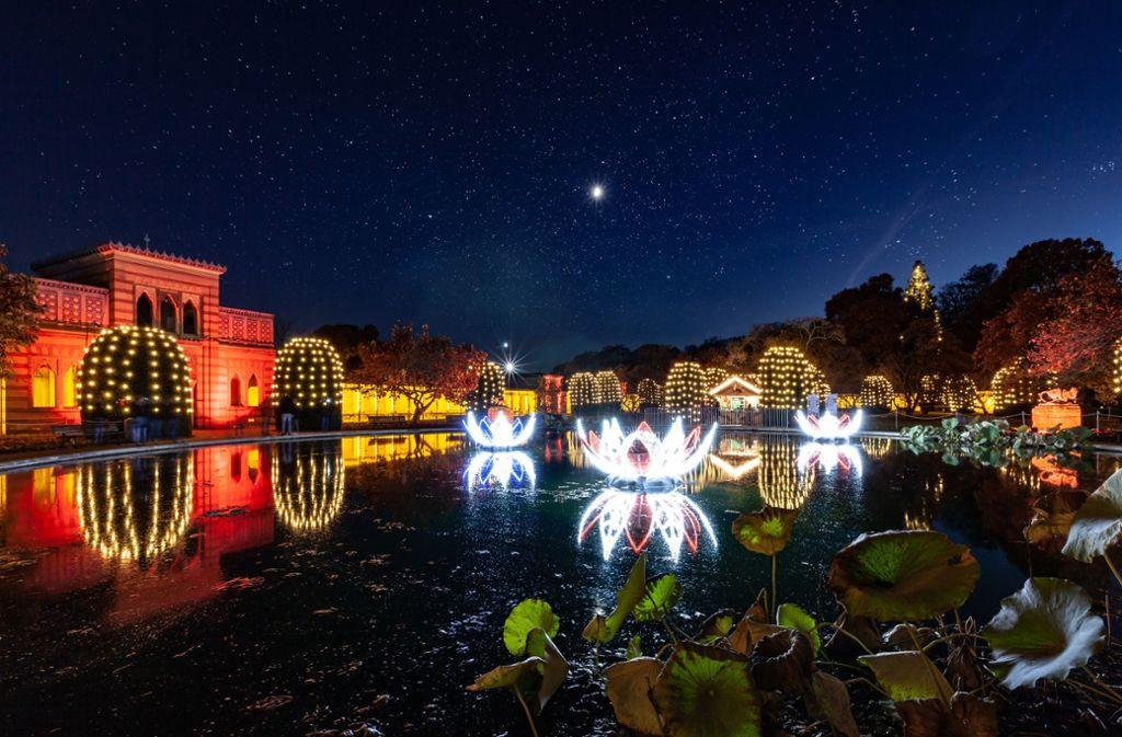 Über 20 Lichtinstallationen verzaubern die Besucher in der Wilhelma. Foto: Robert Duda