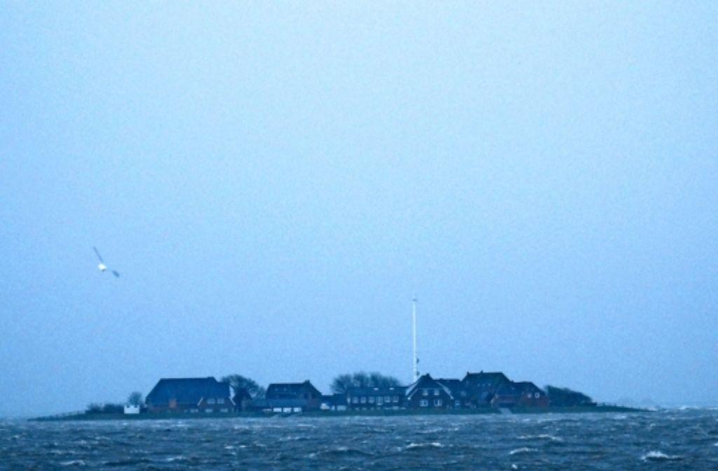Die Hallig Hooge ist sturmerprobt. Fünf Mal im Jahr ist sie überflutet. Foto: Hampel