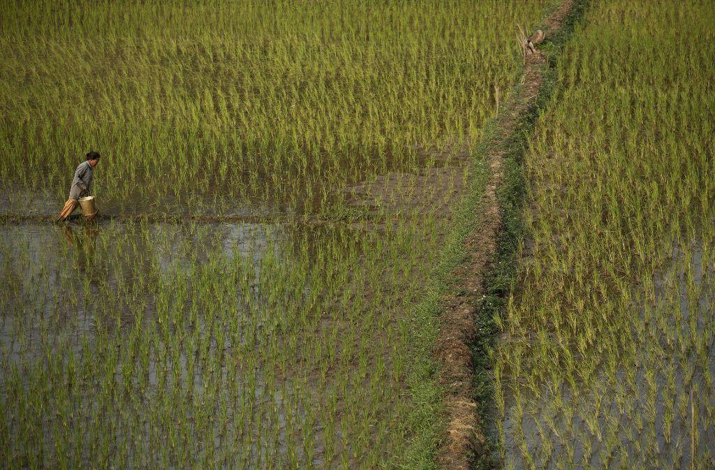 Das ländliche Indien ist Thema einer Fotoausstellung in Althütte. Foto: AP