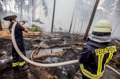 Waldbrand wütet unweit von Berlin