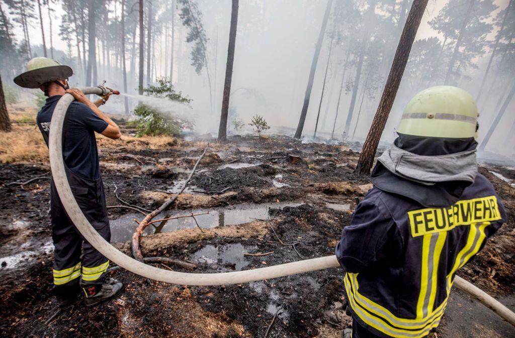 Im Südwesten Brandenburgs bekämpfen Feuerwehrleute einen gigantischen Waldbrand. Foto: dpa