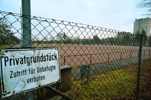 Drei Sportvereine punkten