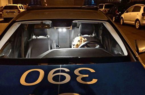 Stuttgarter Polizei sucht weiter nach Motiv