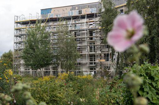 Grün-Schwarz will Regeln für Neubauten entschlacken