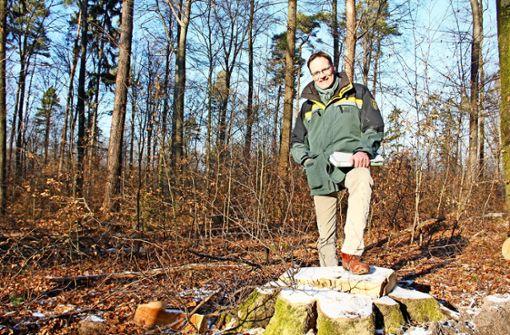 Holzernte im Naturschutzgebiet sorgt für Frust