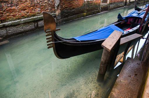 Glasklares Wasser in Venedigs Kanälen – Delfine in den Häfen