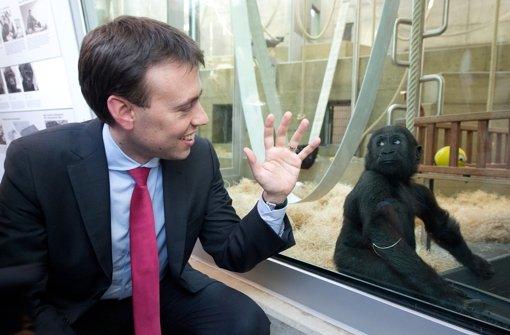Nach Affenhaus-Eröffnung erwartet Wilhelma Besucheransturm