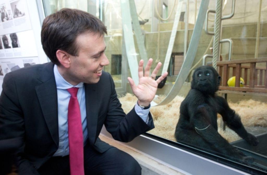 Von der neuen Menschenaffen-Anlage ist auch Finanzminister Nils Schmid beeindruckt; dort bleibt nun auch dem Nachwuchs genug Platz zum Toben. Foto: dpa