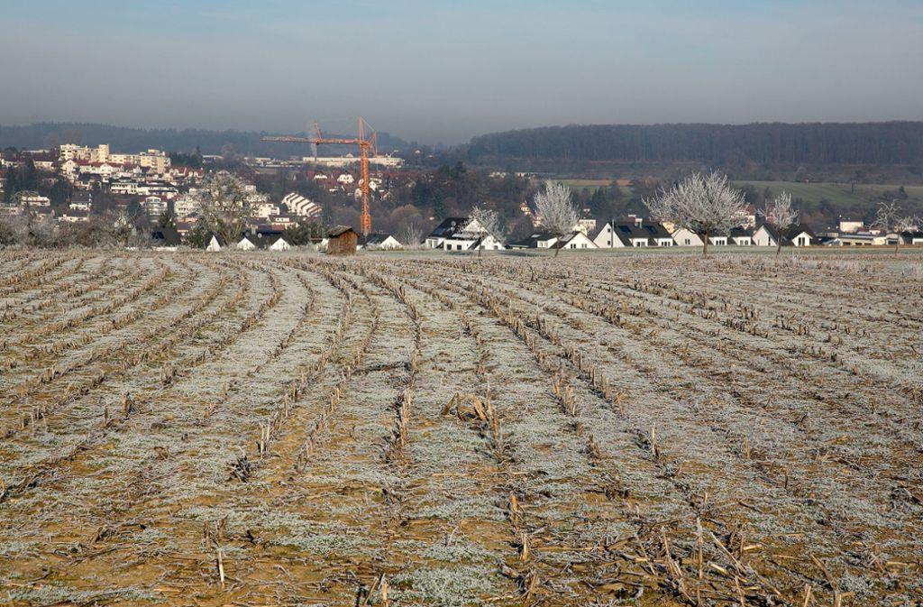 Die neu gegründete Schutzgemeinschaft Dittlau will verhindern, dass oberhalb von Faurndau ein 25 Hektar großes Wohngebiet entsteht. Foto: Horst Rudel/Archiv