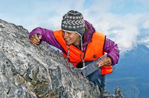 Neue Gewächse erobern die Gipfel