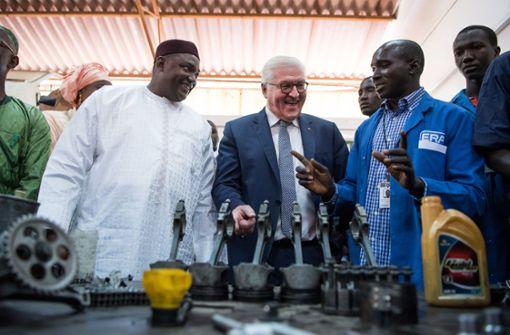 Honig für Gambia:  das Scheitern eines Hilfsprojekts