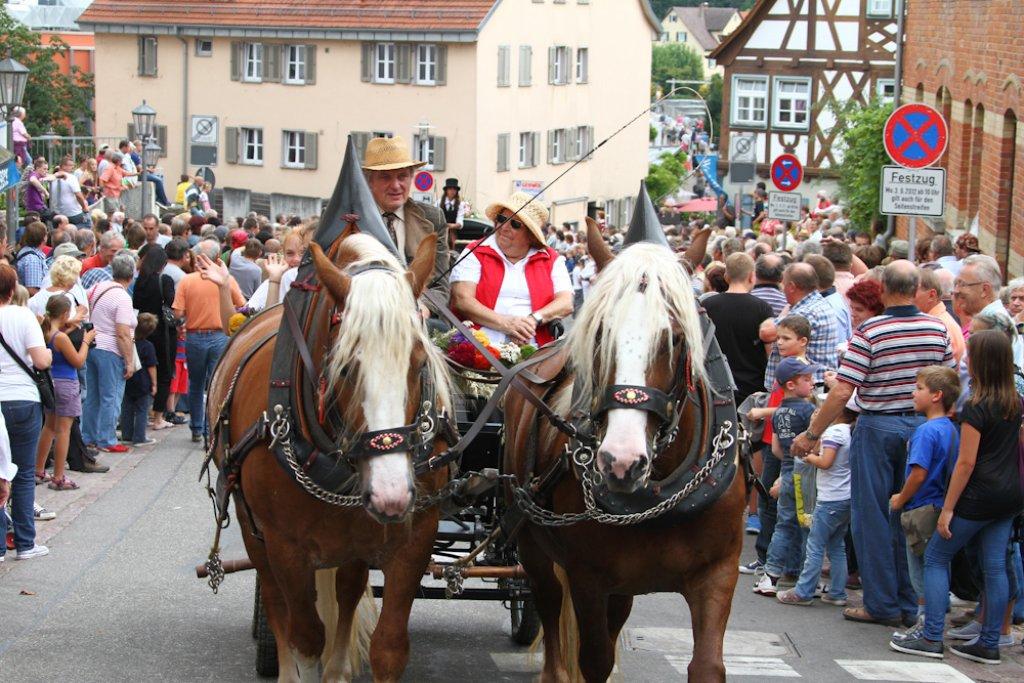 In Bietigheim-Bissingen sind die Pferde los - die wichtigsten Fakten zum Pferdemarkt gibt es in unserer Bildergalerie. Foto: Benjamin Beytekin