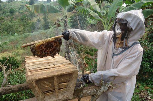 Süßer Honig gegen bittere Armut