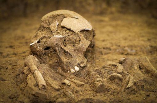 Drei Skelette beim Schulneubau gefunden