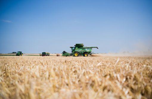 Getreideernte im Südwesten nicht gut - aber besser als erwartet