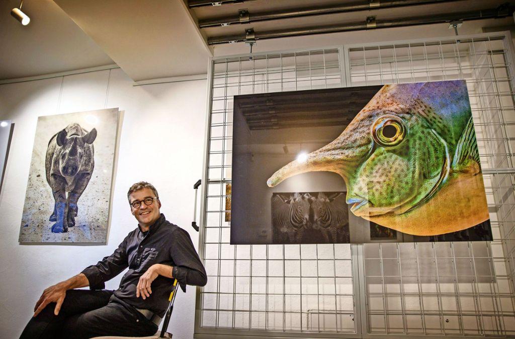 """Nashorn trifft Nasendoktorfisch: der Tierfotograf Stefan Brusius zwischen zwei Fotos seiner Reihe """"Augenblicke"""". Foto: Gottfried Stoppel"""