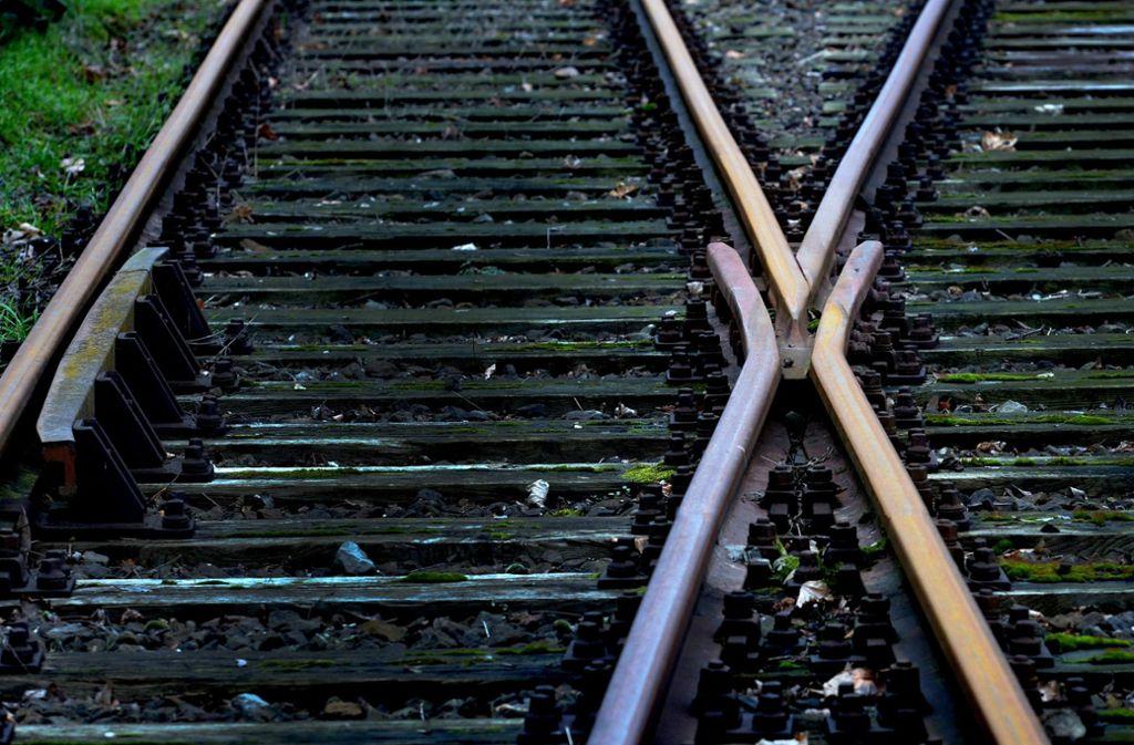 Eine herannahende S-Bahn konnte nur knapp anhalten. (Symbolbild) Foto: picture alliance/dpa/Peter Steffen