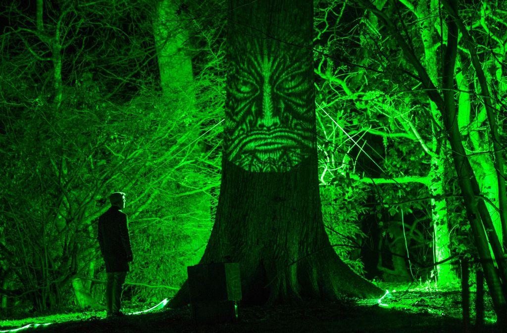 """Winterliche Lichtilluminationen sorgen bei dem Event """"Enchanted Christmas"""" in der Nähe des englischen Tetbury für magische Momente. Foto: Getty Images Europe"""