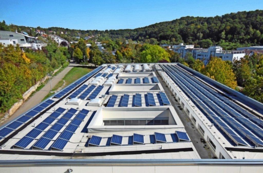 Ein Teil von Leo-Solar 6 auf dem Dach der August-Lämmle-Schule. Foto: Beising