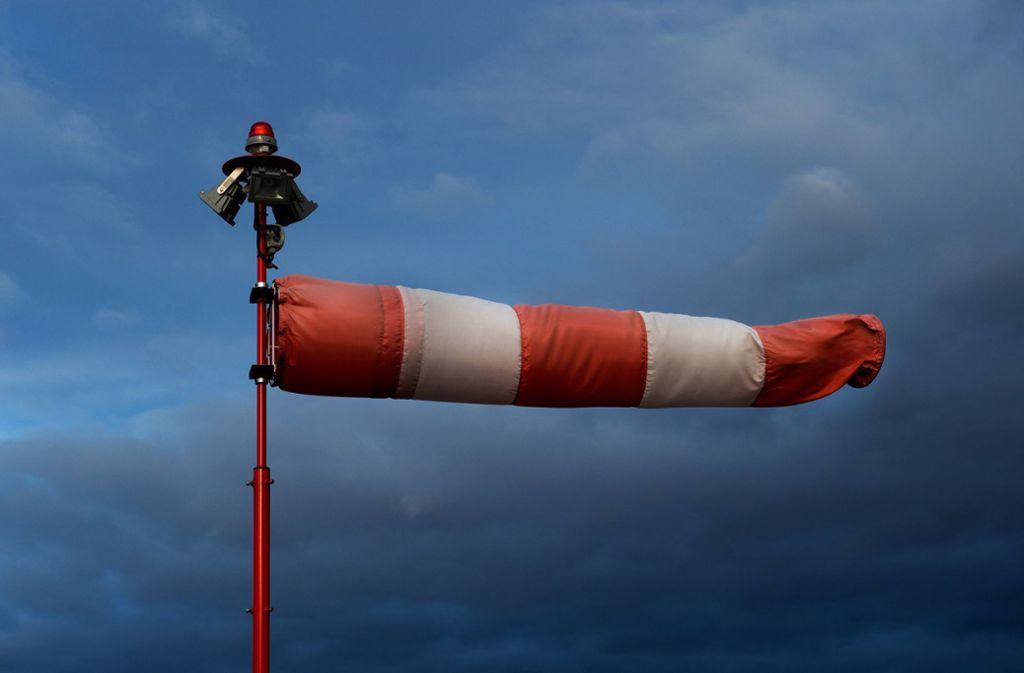 Starker Wind ist am Samstag einem Autofahrer bei Schorndorf zum Verhängnis geworden. Foto: dpa/Arno Burgi