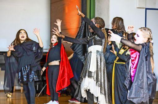 Tanz der Vampire für Nachwuchstalente