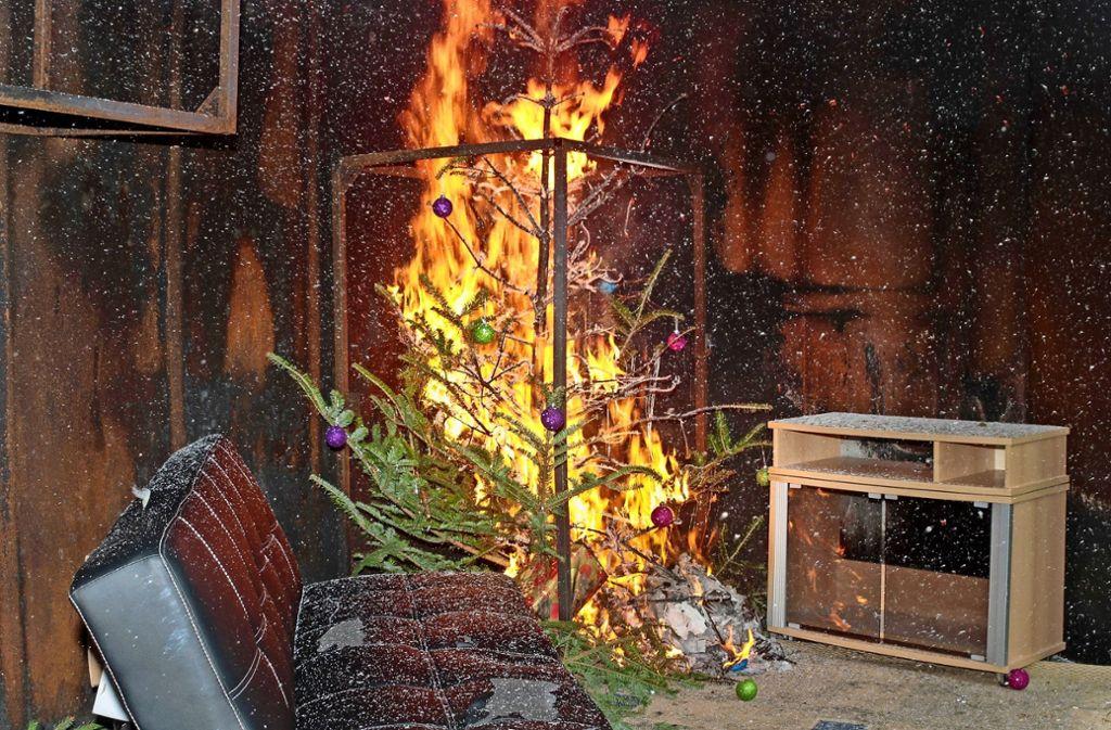 Binnen Sekunden  steht selbst ein noch frisch geschlagener Nadelbaum  in Flammen –   und die greifen schnell um sich. Foto: factum/Bach