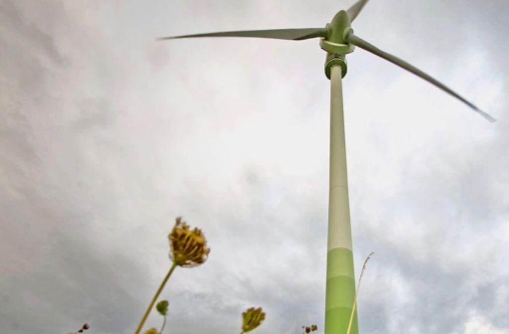 Längst nicht an jedem Standort ist es sinnvoll, Windräder zu installieren, auch wenn es genügend windet. Foto: Lichtgut/Max Kovalenko