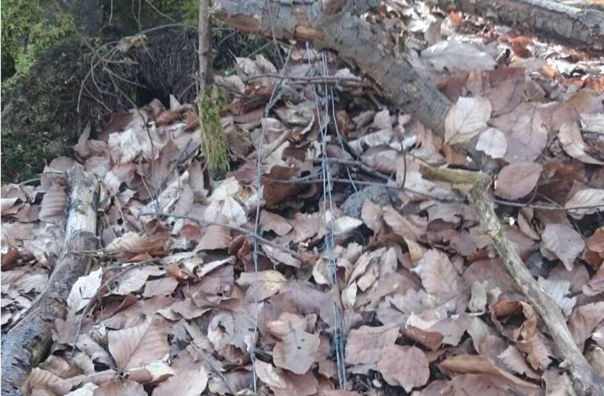 Ein Unbekannter hat einen Zaun an dem Trail bei Buoch platziert. Foto: DIMB IG Rems-Murr