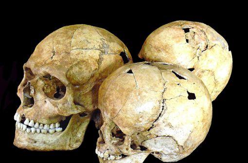 Hart, brutal, kurz: vom Leben der Steinzeitmenschen