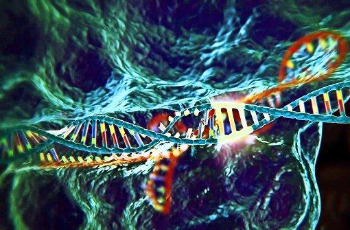 Revolutionäre Gentechnik  – und die Folgen