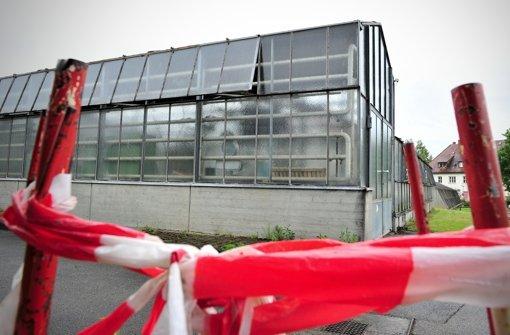 Seit Jahren wird über einen Neubau für die Gartenbauschule Hohenheim gesprochen, so auch 2012. Geschehen ist bislang nichts – außer, dass die Gewächshäuser inzwischen ebenfalls saniert werden müssten. Foto: dpa