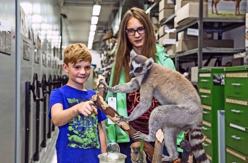 Im Schloss Rosenstein können Kinder Anfang August einen eigenen Tierfilm drehen. Foto: Lichtgut/Julian Rettig