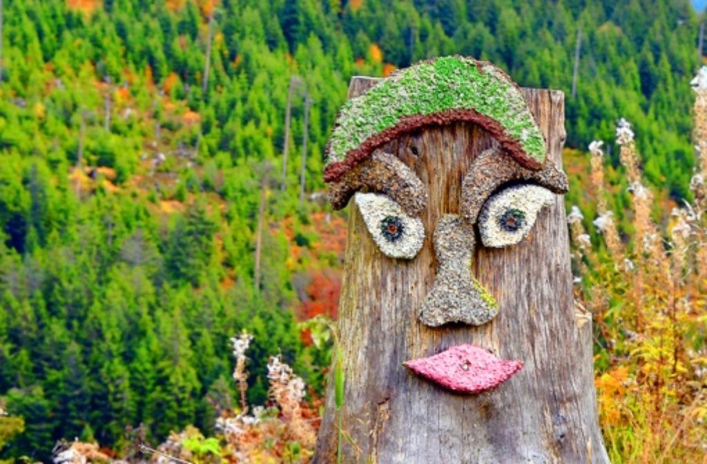 Der Schliffkopf soll Teil des künftigen Nationalparks werden. Foto: dpa